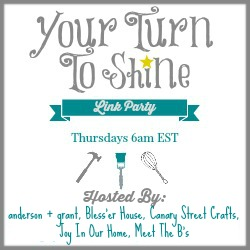 Shared on the Your Turn to Shine Link Party